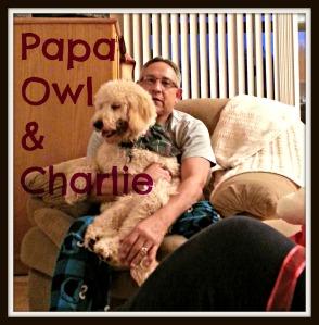 papaowl